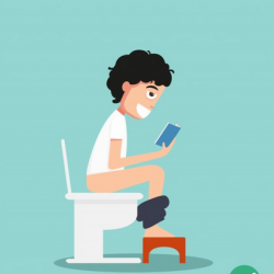 the perfect poop stool